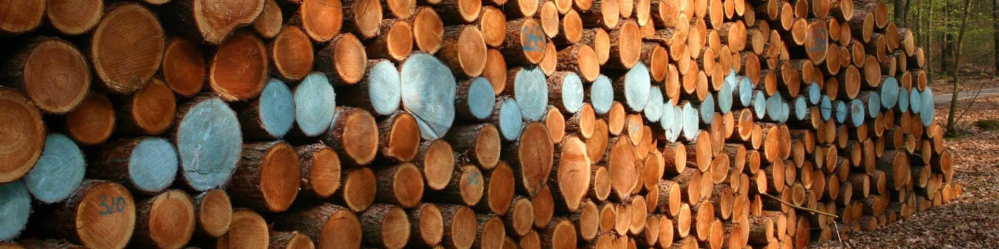 Linescape-hout---Dick-Lubbersen